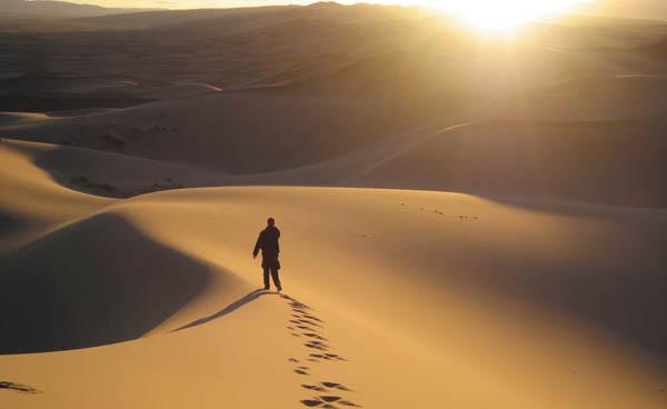 desert_web2